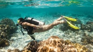 diving raja ampat